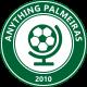 ANYTHING PALMEIRAS